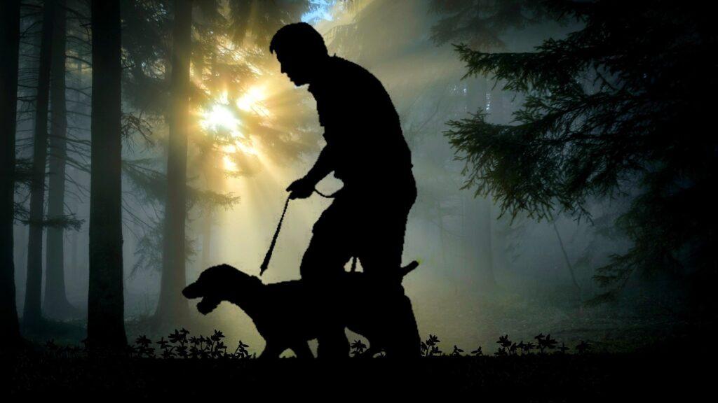 assurance et mutuelle chien de chasse
