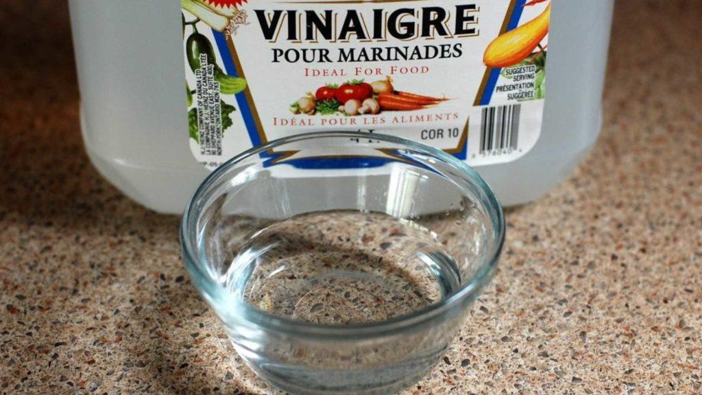 vinaigre blanc répulsif naturel pour chiens