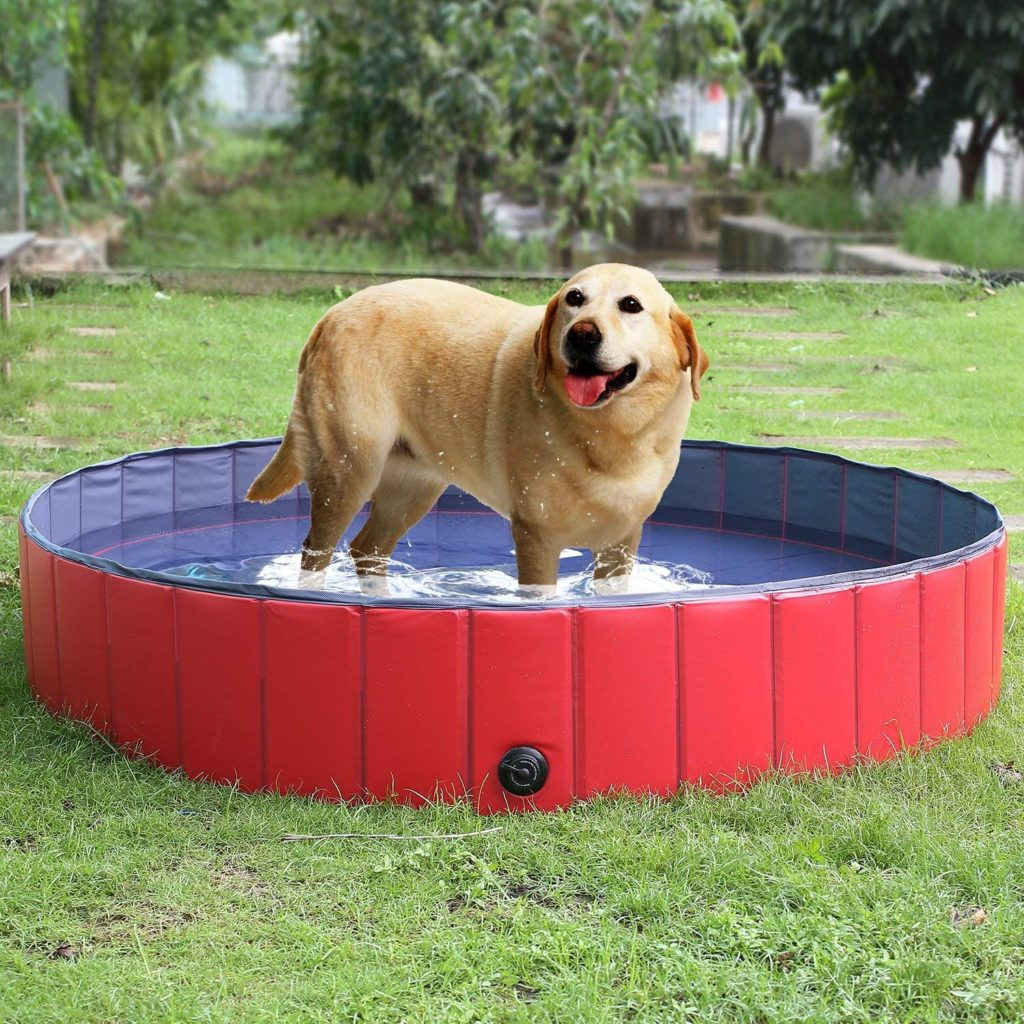 Pedy piscine pliable