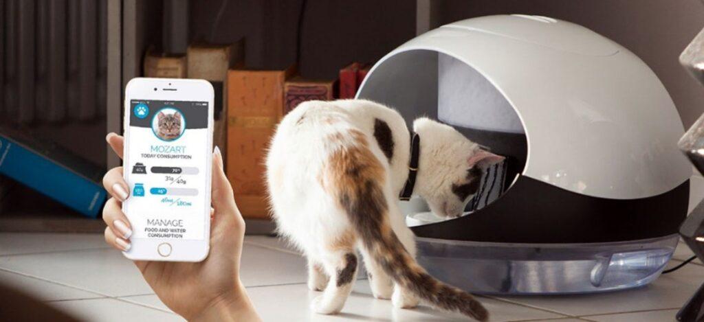 fonctionnalités Catspad