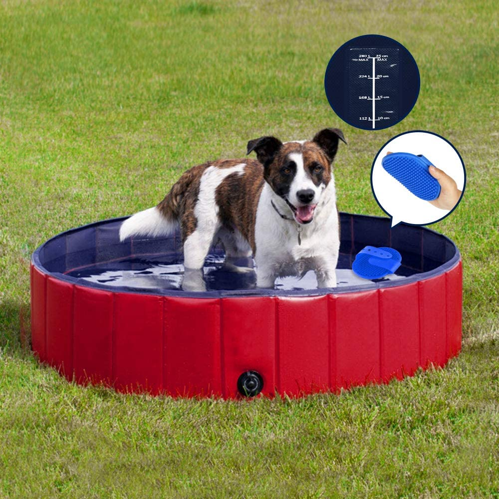 piscine pour chien Speed Doggy Pool