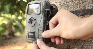 Quel intérêt pour un chasseur de posséder une caméra animalière ?