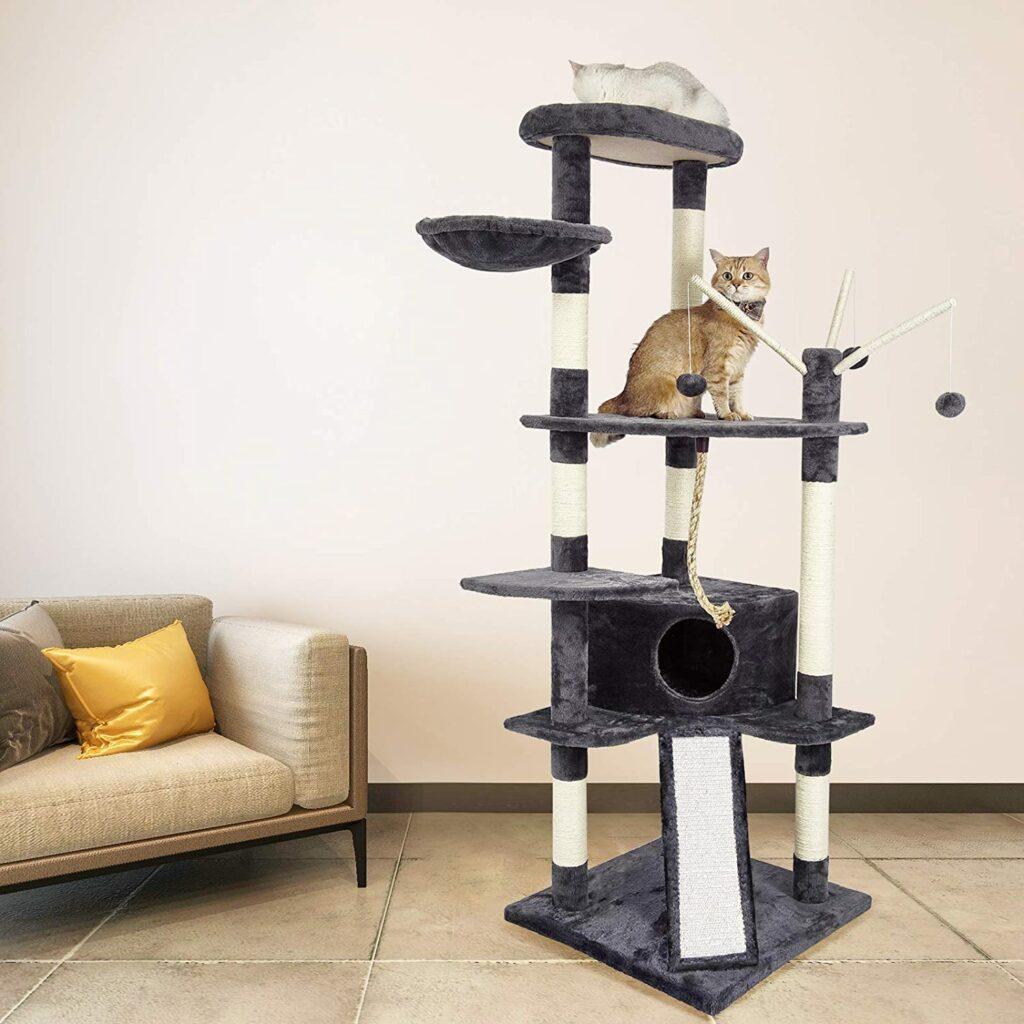 choisir un arbre à chat