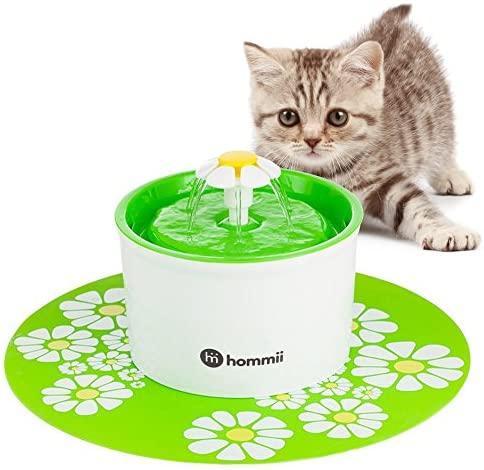 fontaine à eau chat Hommii