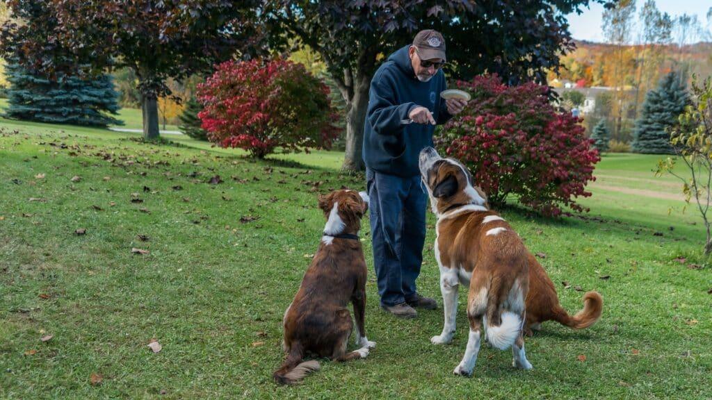 choisir un éducateur canin