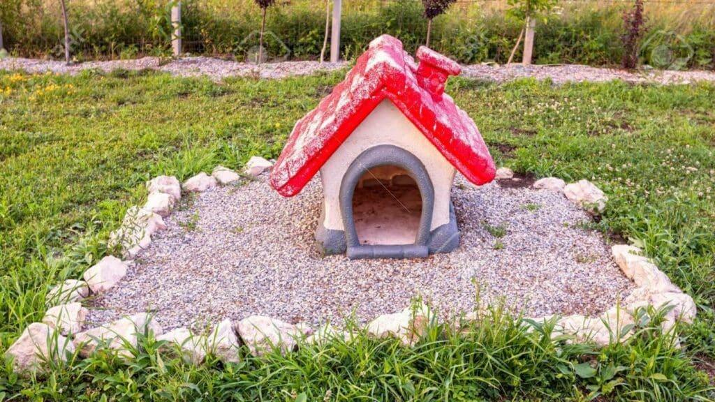 enterrer un chien dans le jardin
